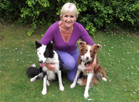 Carol Hayes with Belle and Mist - both regulars to the Mutts2Marvels dog training club in Isycoed (situated between Wrexham and Chester)