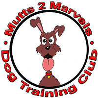 Mutts 2 Marvels Dog Training Club in Isycoed (situated between Wrexham and Chester)